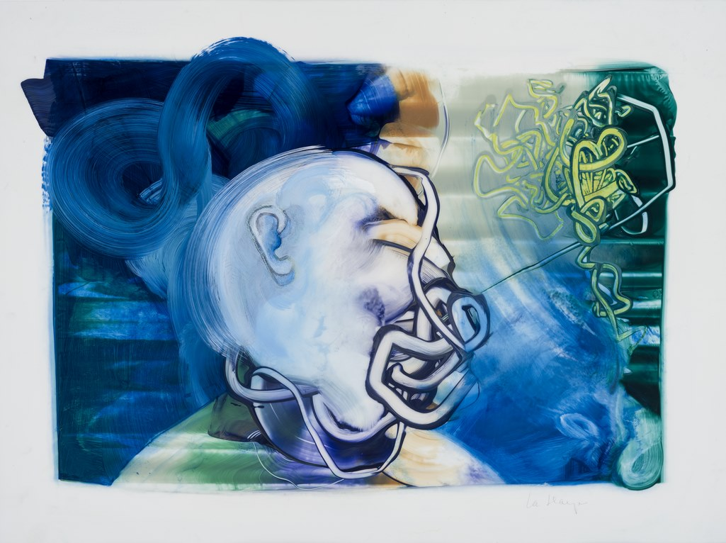 Bouche-bée, acrylique et crayon sur Mylar, 44 x 59 cm, 2018